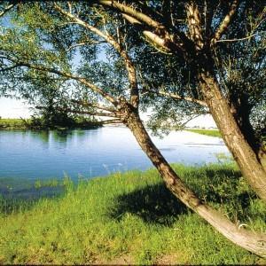 paysage-ile-boucherville