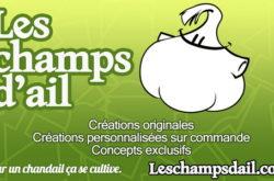 1465833847_Les-champs-dail-s